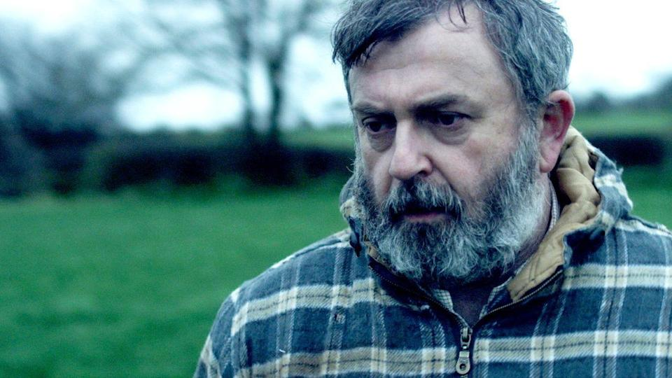 "<p>If there's one sub-genre of Irish movie that Netflix loves, it's the revenge drama: This film follows a mild-mannered farmer who seeks too avenge the death of his elderly mother, who dies during a home invasion.</p><p><a class=""link rapid-noclick-resp"" href=""https://www.netflix.com/title/80174219"" rel=""nofollow noopener"" target=""_blank"" data-ylk=""slk:WATCH NOW"">WATCH NOW</a></p>"