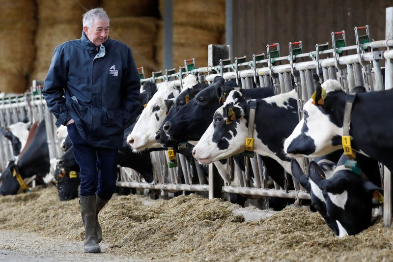 Farmer and breeder Jean-Claude Pette poses next to his cows in his farm at Lizines