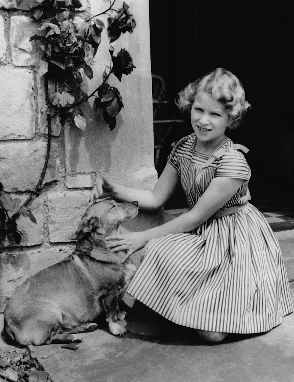 <p>Princess Anne pets a corgi—who really seems to be enjoying the attention—at Windsor Castle.</p>