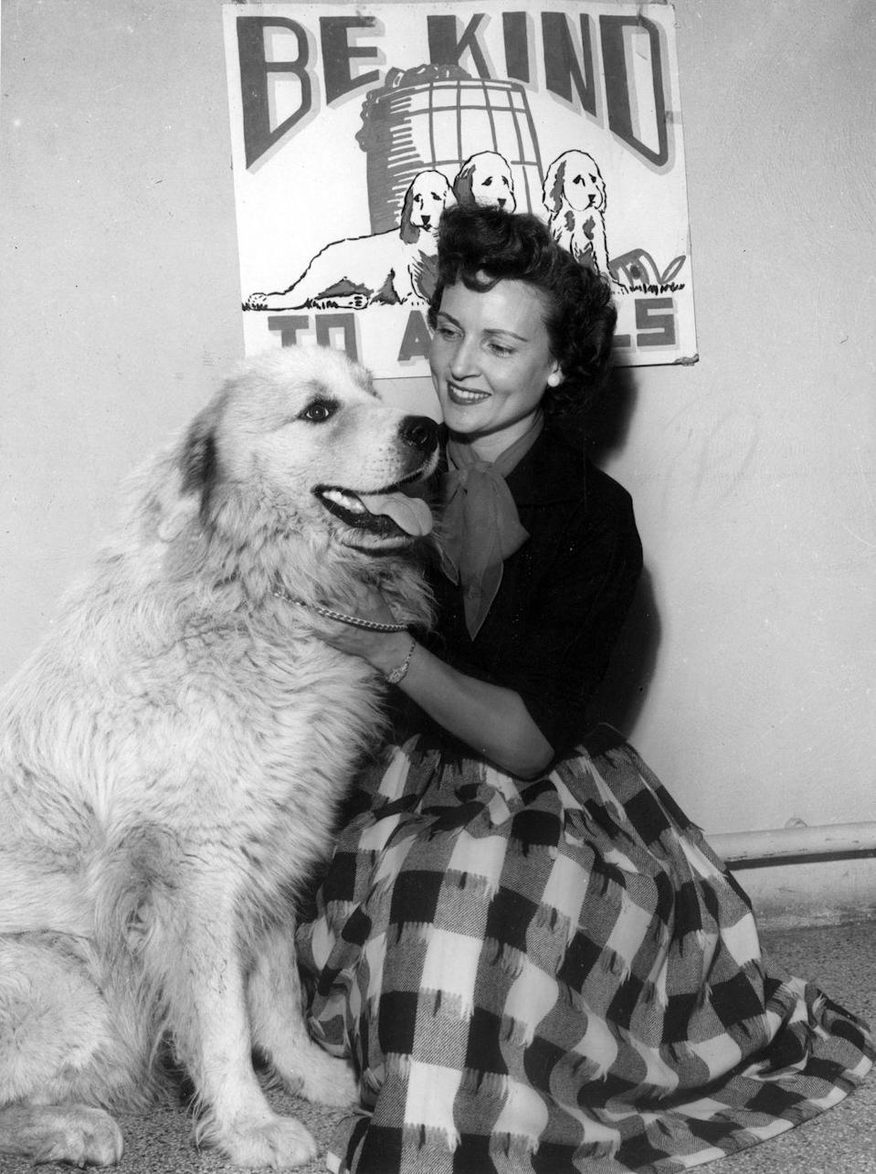<p>A lifelong animal lover, Betty not only always had pets herself (including a St. Bernard named Stormy!), but she's also worked with a number of animal welfare charities, such as the Los Angeles Zoo Commission and Actors and Others for Animals. </p>