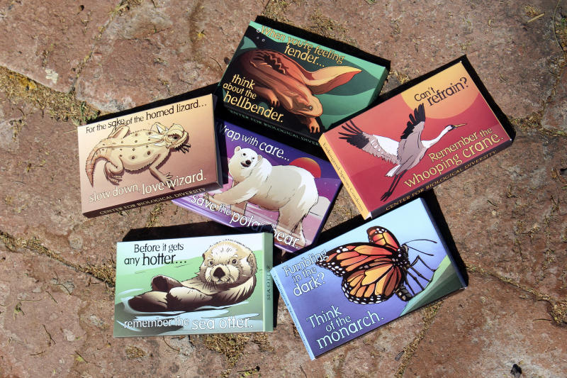"This undated photo provided by the Center for Biological Diversity in Tucson, Ariz., shows condom packages designed by Lori Lieber from the center's ""Endangered Species Condoms"" series, featuring rhyming maxims and Shawn DiCriscio's illustrations of animal species threatened by population growth. As part of the center's ""Pillow Talk"" program, hundreds of the condoms will be distributed for free during evening Valentine's Day events for adults on Friday, Feb. 9, 2018, at the Carnegie Science Center in Pittsburgh, and the San Diego Natural History Museum. (Center for Biological Diversity via AP)"