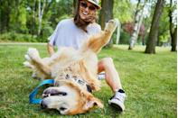 "<p>Kind of. ""Our mind, body, and soul are renewed when we play,"" explains Hall. So go outside for a game of tag with your child or <a href=""https://journals.lww.com/nurseeducatoronline/Abstract/2018/05000/Effect_of_Canine_Play_Interventions_as_a_Stress.16.aspx"" rel=""nofollow noopener"" target=""_blank"" data-ylk=""slk:run around with your pup"" class=""link rapid-noclick-resp"">run around with your pup</a>—doctor's orders!</p>"