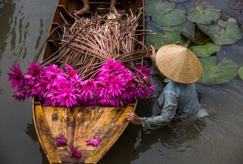 mekong - Credit: getty