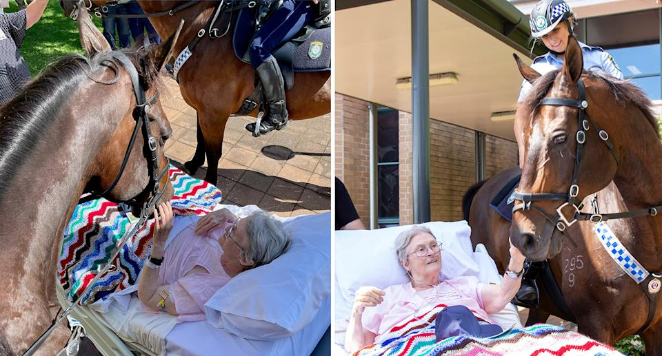 Rita Meredith (nee Browning) spending some time with NSW Mounted Police Horses 'Don' and 'Hollywood'. Photo Credit: NSW Mounted Police