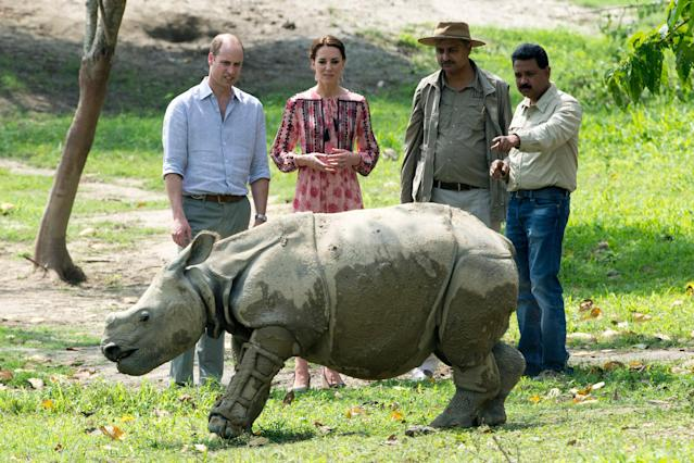 The Duke and Duchess at the Centre for Wildlife Rehabilitation and Conservation in India. (Arthur Edwards)