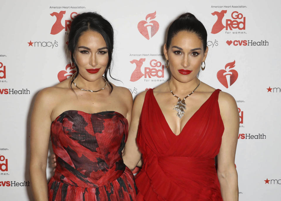 Photos: Take a look back at Nikki & Brie Bellas Hall of