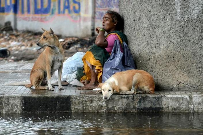 A homeless woman and stray dogs sit beneath a bridge in Chennai as it rains during a government-imposed nationwide lockdown in India (AFP Photo/Arun SANKAR )