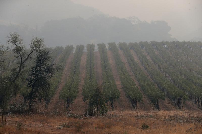 Heavy smoke hangs over a vineyard as the Nuns Fire continues to burn on Oct. 10, 2017, in Glen Ellen, California. (Justin Sullivan via Getty Images)