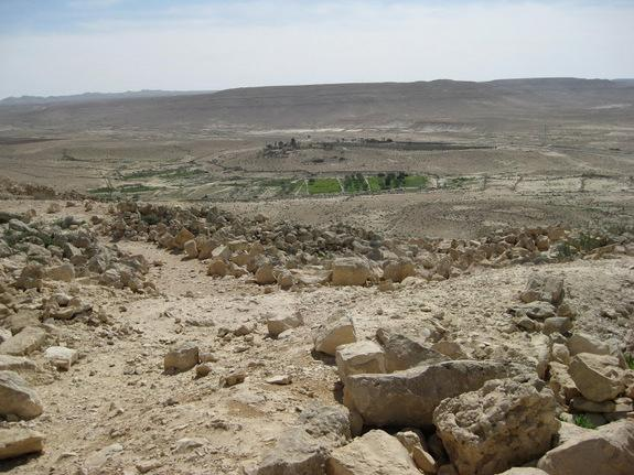 By using walls to channelize and collect floodwaters, ancient farmers made the most of scant rainfall to grow crops in the desert. These techniques are still used today, like in this field outside the old city of Avdat, Israel.