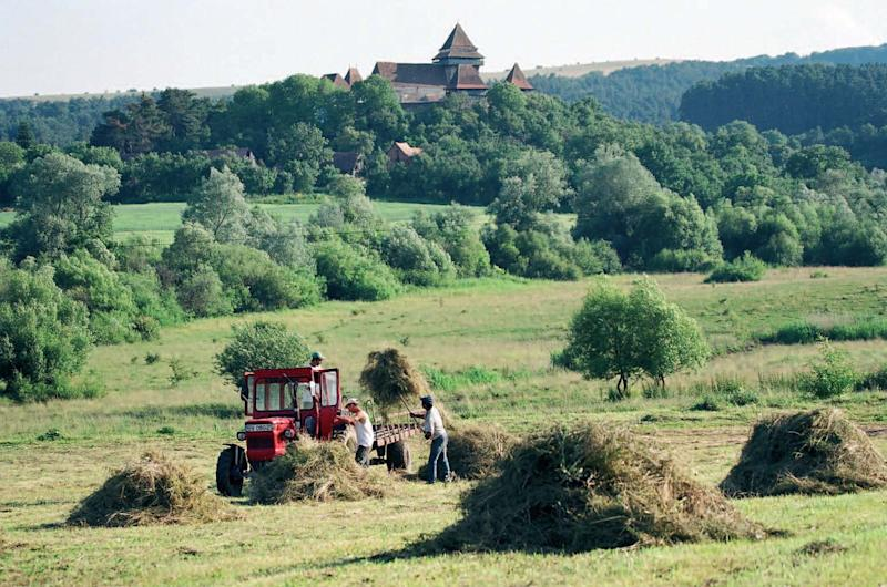 This undated handout photo provided by Fundatia ADEPT Transilvania shows a scene of rural life from the Transylvania region of Romania. The area is drawing tourists, including Prince Charles, who has championed local farms for their economic potential and environmental sustainability. (AP Photo/Fundatia ADEPT Transilvania)