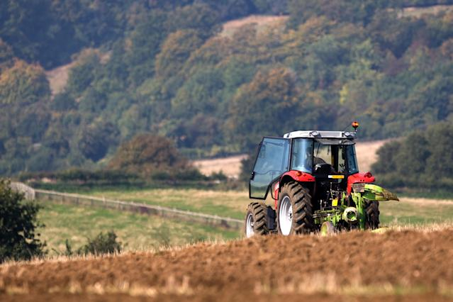 Dr Tim Leunig, an economic adviser to Chancellor Rishi Sunak, said agriculture was 'not critically important'. (Getty)