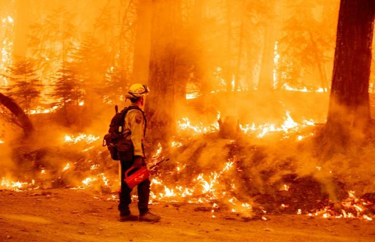 It is now understood that climate change involves not just higher temperatures, but also more intense and frequent extreme events like heatwaves that spark wildfires