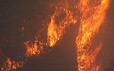 <span>The fires have destroyed an area almost a third the size of England</span> <span>Credit: Australian Broadcasting Corporation </span>