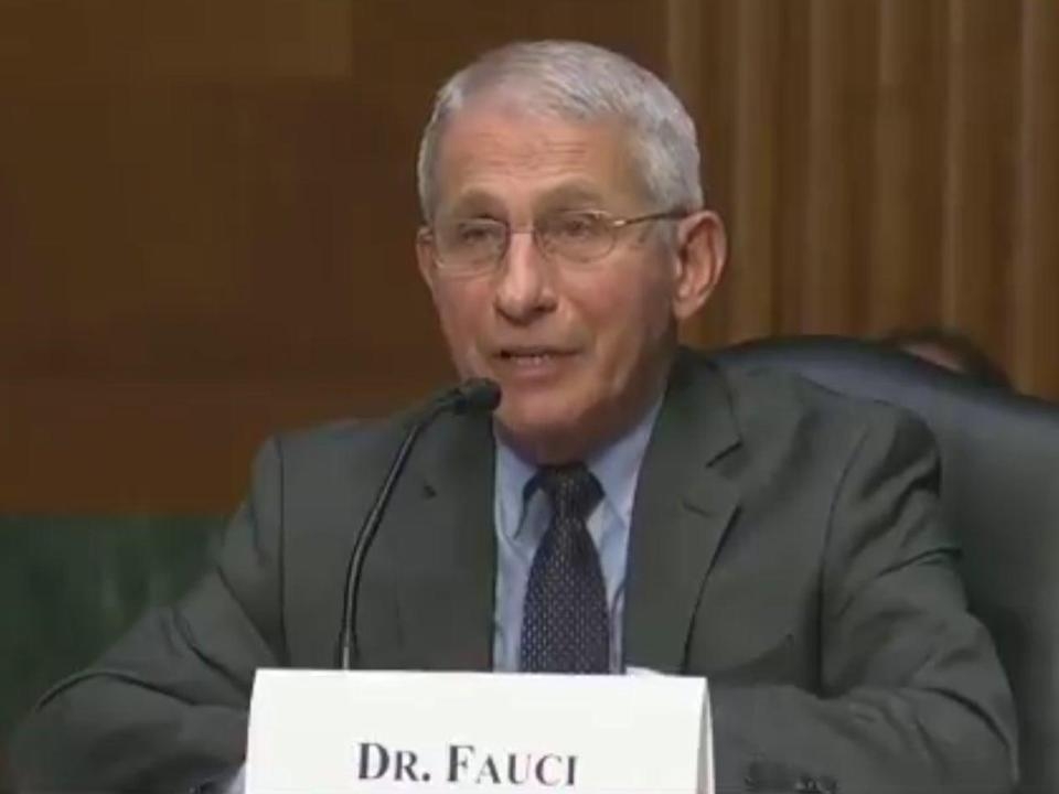 <p>Dr Anthony Fauci during Tuesday's Covid hearing in Congress</p> (Aaron Rupar/Twitter/C-span)
