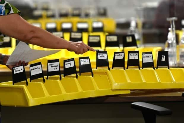 A worker organizes bins labelled with the names of candidates into which special ballots from national, international, Canadian Forces and incarcerated electors will be placed and counted, at Elections Canada's distribution centre in Ottawa on election night Monday, Sept. 20, 2021. (Justin Tang/The Canadian Press - image credit)