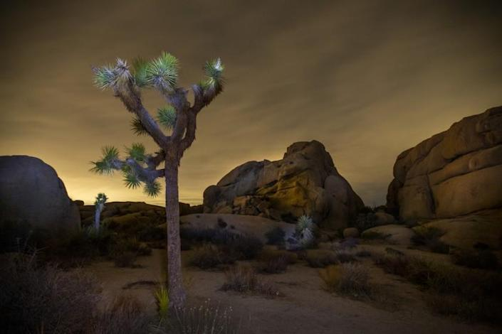 Joshua Tree National Park, CA - May 26: The super flower blood moon is obscured by clouds early Wednesday, May 26, 2021 in Joshua Tree National Park, CA. This occurs when the moon enters Earth's shadow and turns a blood red color during a total lunar eclipse, the first in more than two years visible from the United States. (Allen J. Schaben / Los Angeles Times)