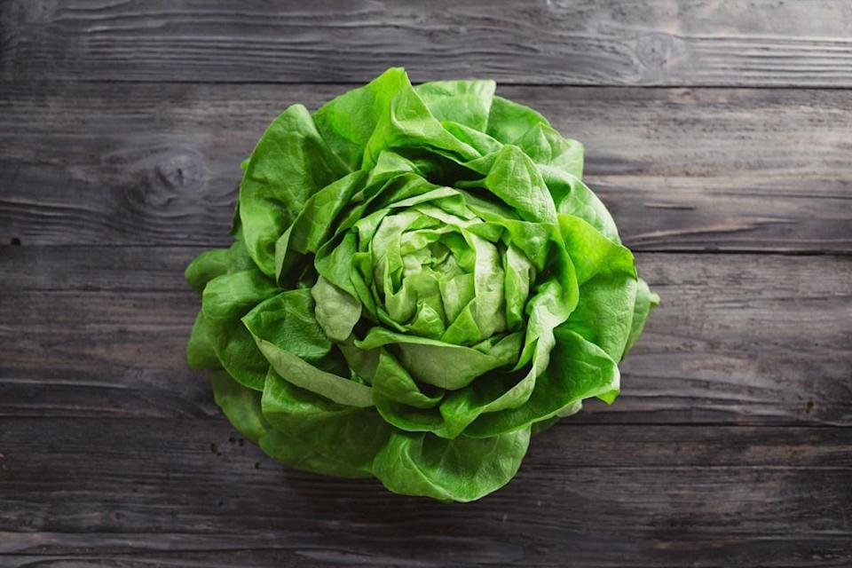 """It may not seem like lettuce and sunflowers have much in common, other than the fact that they're both plants and they both have leaves. Frankly, there are plenty of ways that they're quite different. For instance, lettuce grows close to the ground while sunflowers reach rather impressive heights. Despite those differences, lettuce is of the <em>Lactuca</em> genus, which is a <a href=""""https://www.newworldencyclopedia.org/entry/Lettuce"""" rel=""""nofollow noopener"""" target=""""_blank"""" data-ylk=""""slk:member of the Asteraceae family"""" class=""""link rapid-noclick-resp"""">member of the <em>Asteraceae</em> family</a>, which is also known as the aster, daisy, or sunflower family. Who knew?!"""