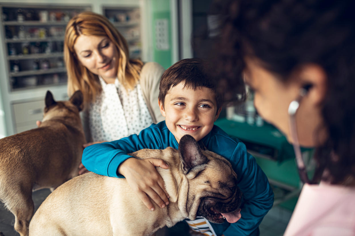Royal Veterinary College researchers say support for pet owners is 'needed now more than ever'. (Stock, Getty)