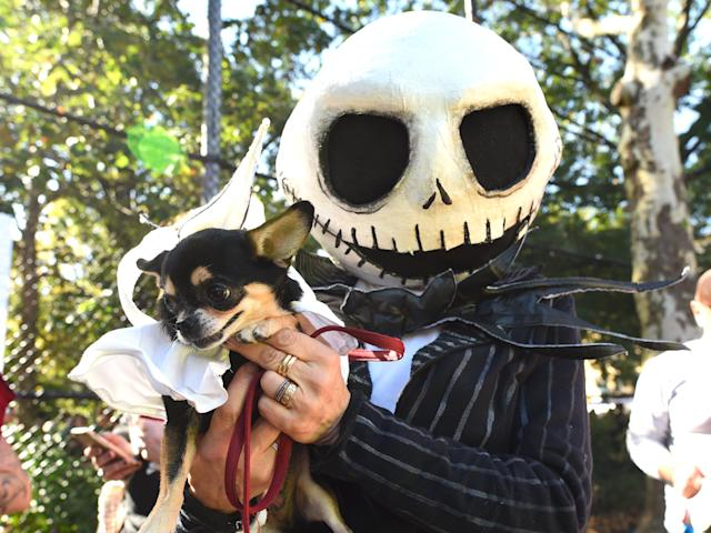 <p>A man poses with his dog in costume during the 27th Annual Tompkins Square Halloween Dog Parade in Tompkins Square Park in New York on Oct. 21, 2017. (Photo: Timothy A. Clary/AFP/Getty Images) </p>