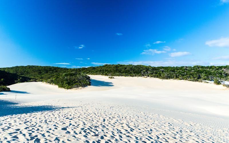 Fraser Island is a Unesco World Heritage-listed landmass formed entirely of sand - bjuerges