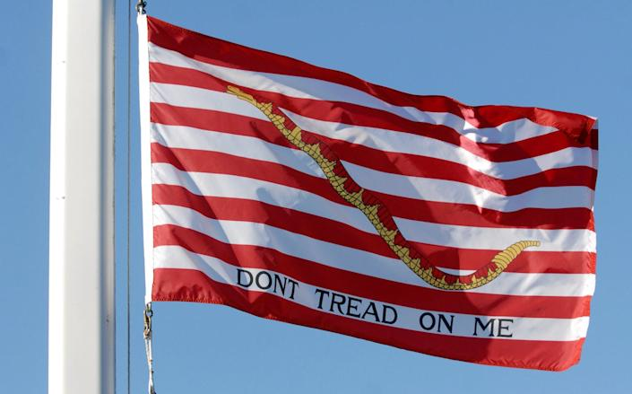 The flag known as the 'First Navy Jack'