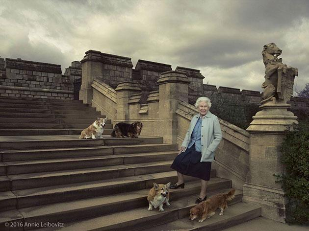The Queen walks the grounds of Windsor Castle with her pets. Photo: Facebook