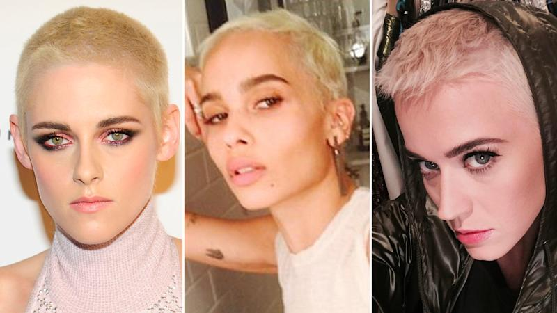 Ever wonder what your favorite celebrity would look like with a shaved head? Stars like Kristen Stewart, Zoe Kravitz and