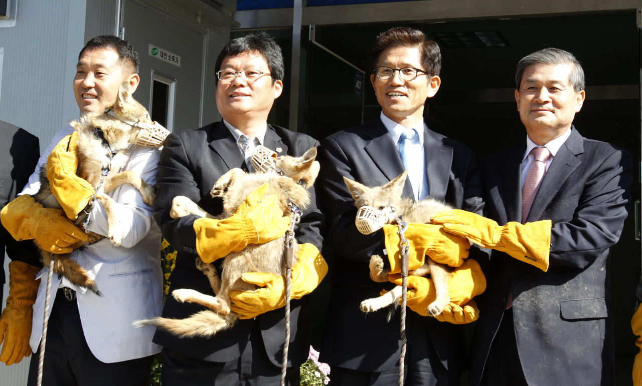 REUTERS/Jo Yong hak South Korean stem cell scientist Hwang Woo-suk (R) and Gyeonggi province governor Kim Moon-su (2nd R) hold a cloned coyote during a donation ceremony at a wildlife protection centre in Pyeongtaek, south of Seoul, October 17, 2011. Hwang on Monday donated eight coyotes that he and his research team at the Sooam Biotech Research Foundation cloned to help the endangered species, to the Gyeonggi provincial government, local media reported. Hwang was at the heart of a research fraud case in 2005, where a team he led was found by review boards to have manipulated key data in its studies on cloning stem cells. South Korea, considered then a global leader in human embryonic stem cell research, all but put stem cell research into deep freeze as a result of the scandal.