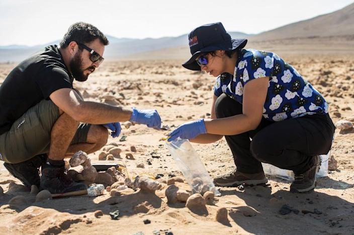 Chile's Atacama desert, like Mars, is hot, and extremely dry, but tiny algae and bacteria that survive there could give clues to potential life on the Red planet (AFP Photo/Martin BERNETTI)