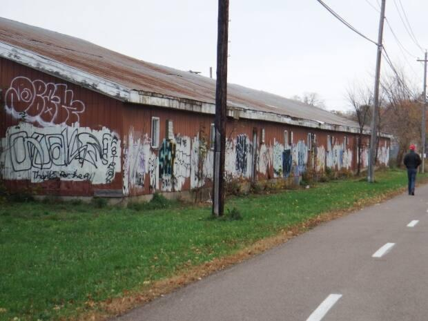 The Fredericton Trails Coalition, in partnership with the New Brunswick Provincial Exhibition (NBEX), is seeking an artist to create a mural along the horse barns. (Fredericton Trails Coalition - image credit)