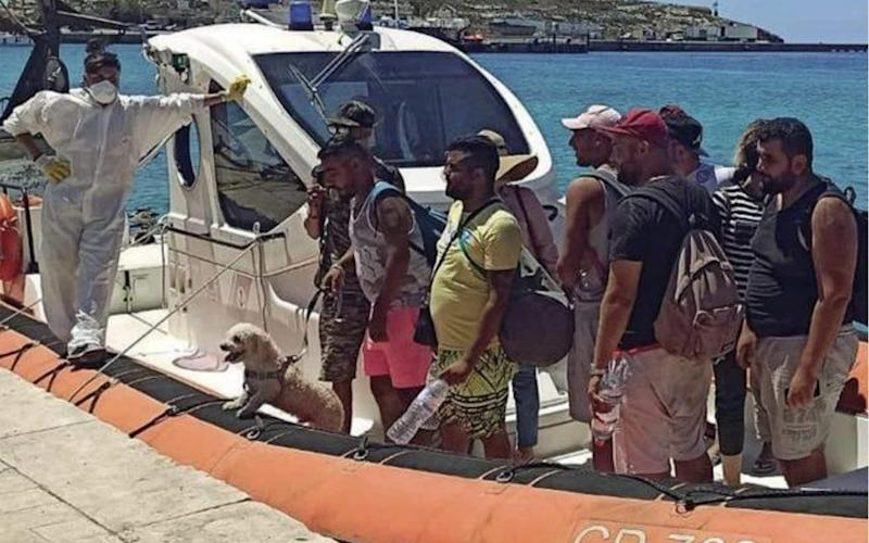 A group of Tunisians turned up on Lampedusa this week complete with suitcases, sunglasses - and a pet dog - Corriere della Sera