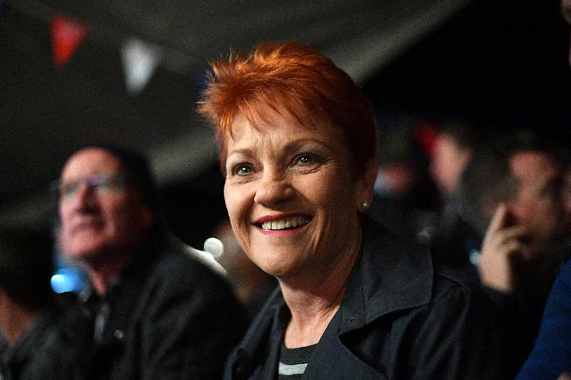 One Nation Senator Pauline Hanson drafted the resolution, which railed against what it described as 'the deplorable rise of anti-white racism'