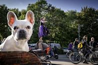 Nestled in the heart of Copenhagen, Christiania is seen by some as a progressive social experiment, while others simply see it as a den of drugs (AFP/Mads Claus Rasmussen)