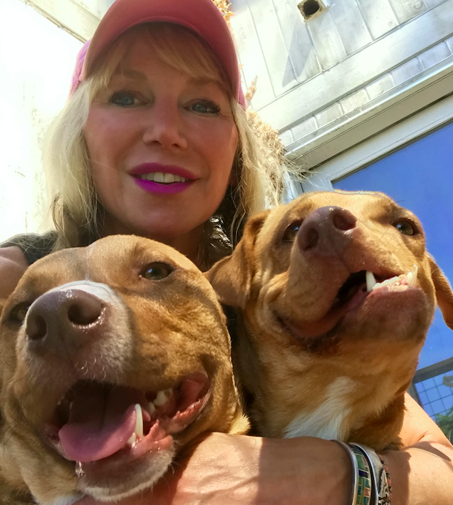Picasso now lives with eight other rescue dogs, two cats and a rescue pig and owner Liesl Wilhardt. (SWNS)