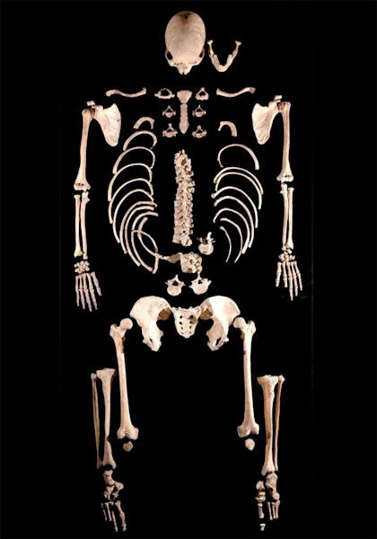 The skeleton of an ancient caveman dubbed Brana 1 yielded the oldest DNA found in a modern human.