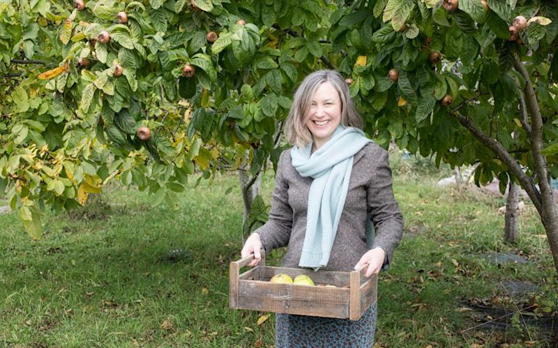 Lia Leendertz gathers apples and quince - KirstieYoung