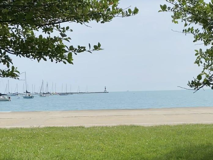 a view of lake michigan through trees in chicago