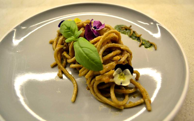 Pasta with black soldier fly larvae, garnished with mealworms is one Insect Experience dish. | Courtesy of Gourmet Grubb