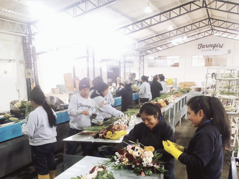 Farmgirl Flowers recently opened a distribution center in Ecuador. (Courtesy of Farmgirl Flowers)
