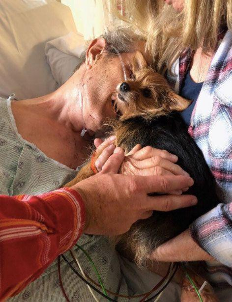 With the help of the nurses, they where are able to sneak the Yorkie mix in for one last goodbye. Source:@elliemigueel/ Twitter