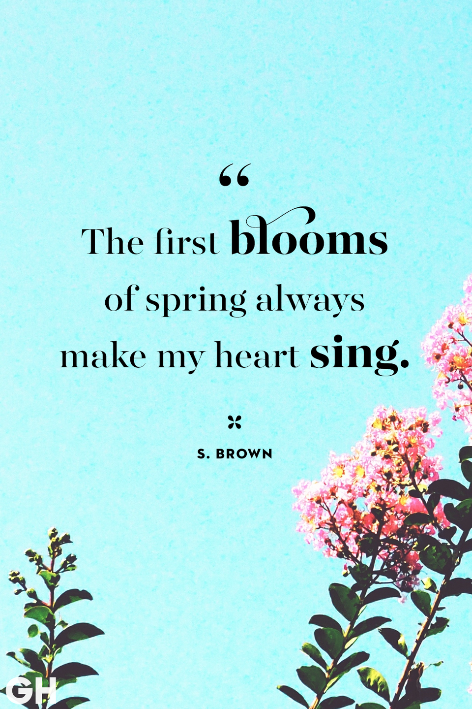 <p>The first blooms of spring always make my heart sing.</p>