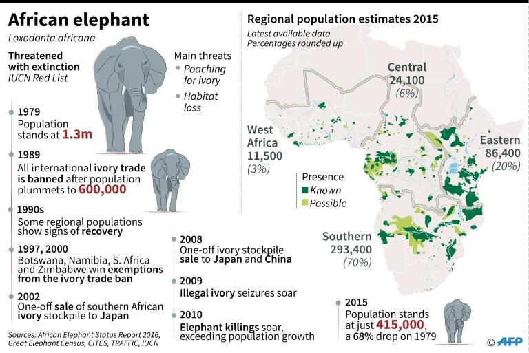 Map of Africa's elephant populations, with chronology of species protection measures, the ivory trade ban and poaching