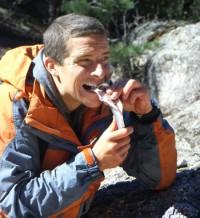 Mipcom: NBC Greenlights Bear Grylls' 'Get Out Alive' For Primetime 2013