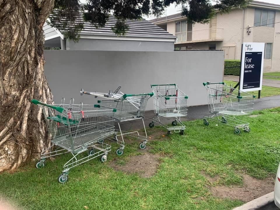 Pictured are some of the Woolworths trolleys seen in Carnegie on the side of the road