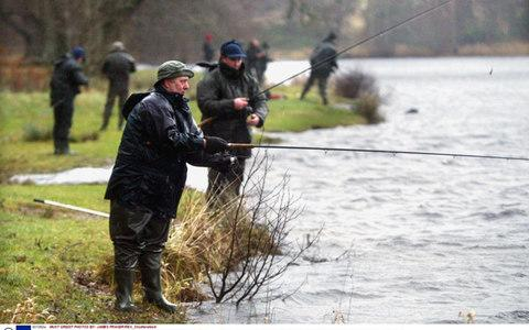 Wild salmon stocks are dwindling in Scottish rivers  - Credit: Rex Features