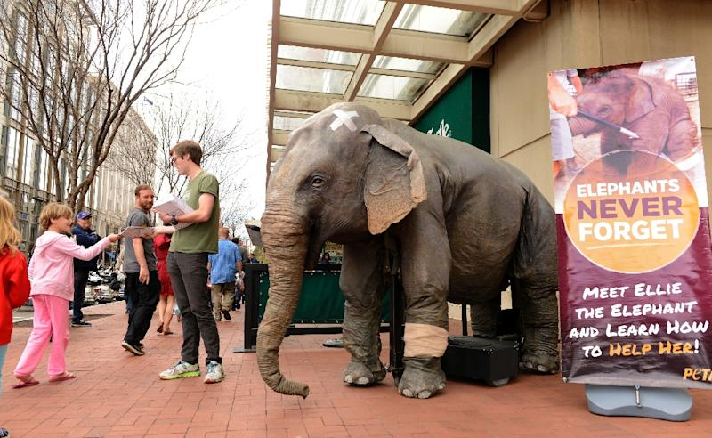 "A man with People for the Ethical Treatment of Animals (PETA) stands next to mechanical elephant ""Ellie"" as he hands out leaflets outside the Ringling Bros. Circus on April 2, 2016 in Washington, DC (AFP Photo/Mike Theiler)"