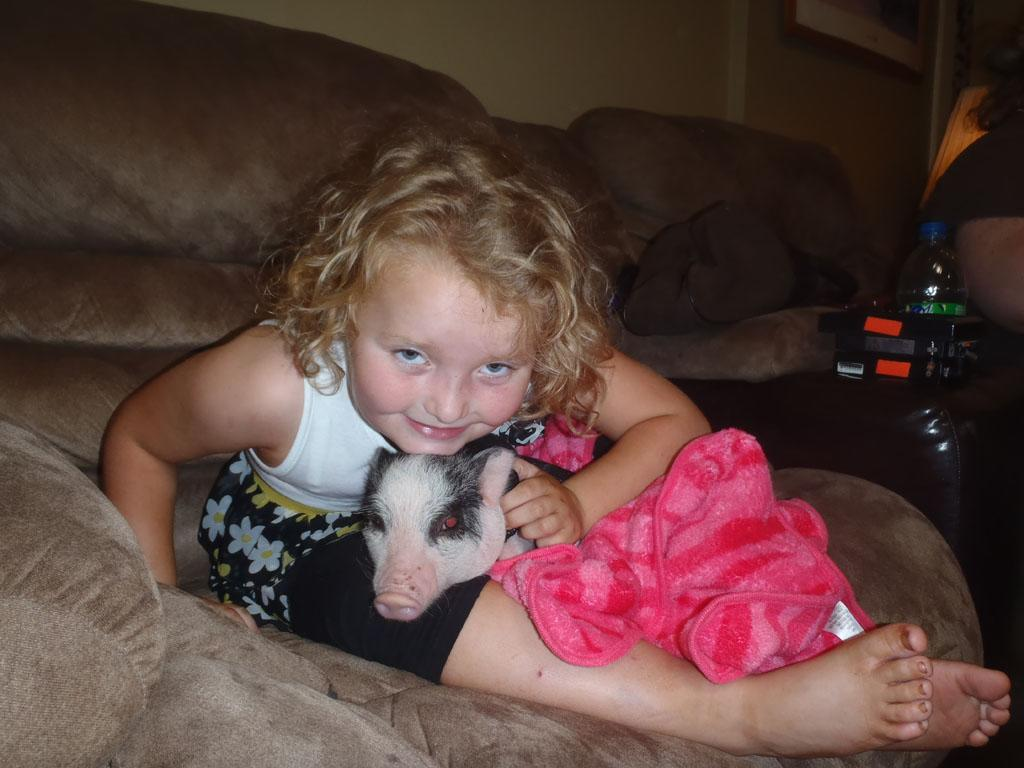 Honey Boo Boo (Alana) and her new pet pig, Glitzy.