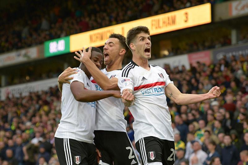 Canaries stuffed | Fulham remain two points behind sixth-placed Sheffield Wednesday: Joe Toth/BPI/REX
