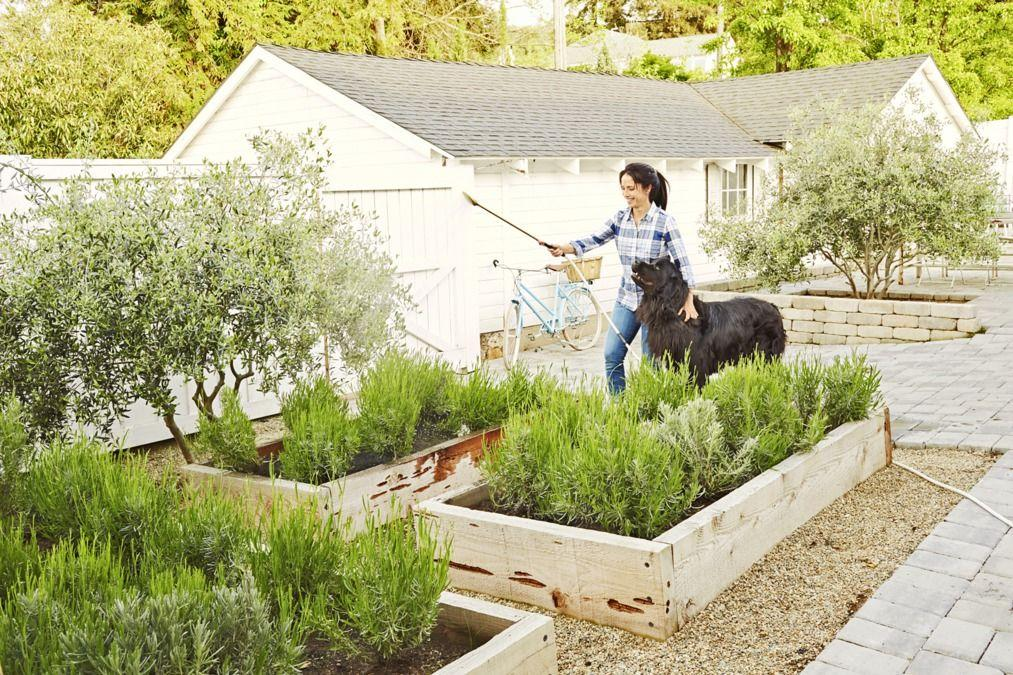 "<p>Everyone wants their patio or lawn to look its absolute best <em>without</em> spending a fortune, doing an enormous overhaul of the existing layout, or fixing what's not broken—and we know that. That's why we've compiled a list of the absolute best backyard ideas out there. We're coming to your rescue with plenty of beautiful projects, inspired suggestions, and smart hacks that you can implement quickly <em>and</em> while on a budget. Instead of doling out dough on a professional designer who will charge a fortune for your wildest and most wonderful <a href=""https://www.countryliving.com/gardening/garden-tours/g1432/landscaping-ideas/"">landscape ideas</a>, save money and take matters into your own hands. You can either skim through our list and get ideas from the eye candy you find there, or dig a little deeper and learn how to recreate each of the looks you see here.</p><p>So, what exactly will you find on our list? Well, a little bit of everything—from <a href=""https://www.countryliving.com/gardening/garden-ideas/g1336/porch-and-patio-decorating-ideas/"">porch and patio decorating ideas</a> to DIY fire pits and never-before-seen planters. In fact, each and every one of these innovative, out-of-the-box tutorials is guaranteed to work for big and <a href=""http://www.countryliving.com/gardening/news/g4183/small-backyard-ideas/"" target=""_blank"">small backyards</a>. Yes, we're really telling you that you can create the backyard of your dreams without breaking the bank—and we'll stand by our word. Now, let's get building!</p>"