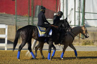 Kentucky Derby winner Medina Spirit, left, leaves the track at Pimlico Race Course after a morning exercise ahead of the Preakness Stakes horse race, Tuesday, May 11, 2021, in Baltimore. (AP Photo/Julio Cortez)
